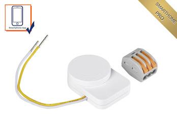 Zusatz Wandschalter Dauerstromgeber & Umwandler für die SmartHome PRO Serie