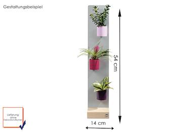 Set Magnettafel silber mit Holzfuß und drei magnetischen Töpfen Zylinder Ø 10 cm